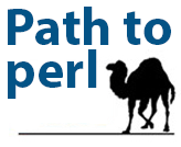 What is the path for perl